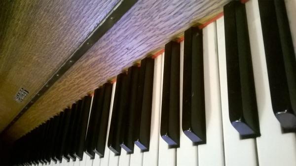Tanja Kallio_Minun puuni - minun pianoni